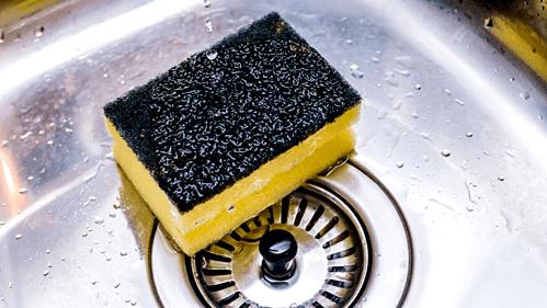Miếng giẻ rửa bát chứa hàng trăm nghìn vi khuẩn