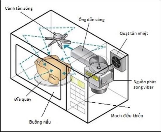Những bộ phận cơ bản của lò vi sóng